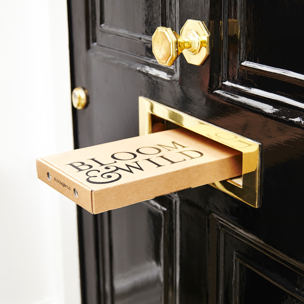 Front Door Letterbox: Bloom & Wild Careers, Funding, And Management Team