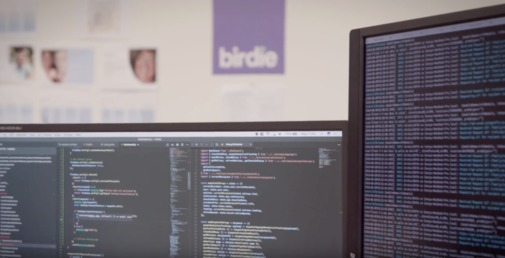 Birdie Jobs: Screenshot